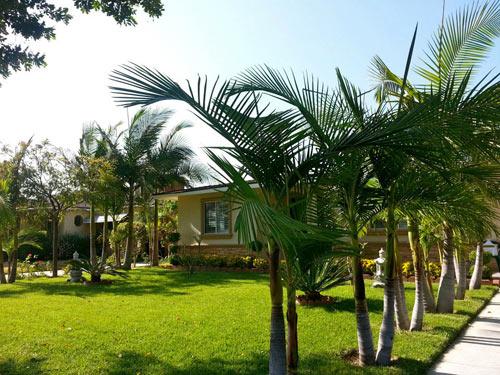 Thăm nhà Quang Lê ở Mỹ - 2