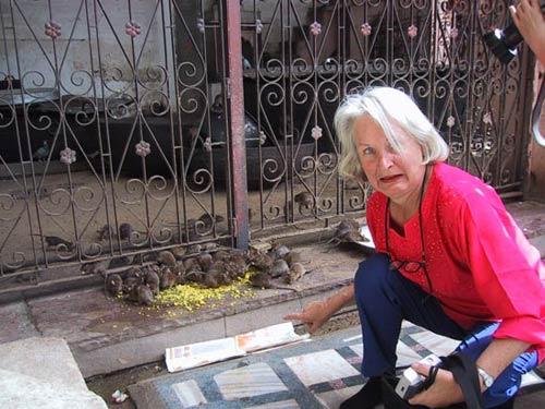 Hai ngôi đền rắn độc và chuột rúc - 7