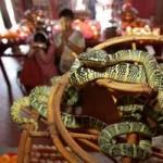 Phi thường - kỳ quặc - Hai ngôi đền rắn độc và chuột rúc