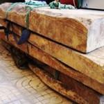 Tin tức trong ngày - Rộ tin đồn trúng gỗ sưa hàng chục tỷ đồng