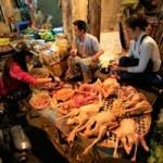 Sức khỏe đời sống - Đặt máy soi thực phẩm bẩn tại các chợ ở Hà Nội