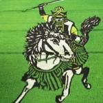 Phi thường - kỳ quặc - Những đồng lúa chỉ có ở Nhật Bản