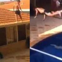 Video: Màn phi thân mạo hiểm từ mái nhà