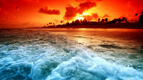 Bãi biển cát đen kỳ lạ ở Hawaii - 4