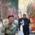 Tin tức trong ngày - Chợ hoa Tết Hàng Lược xưa và nay