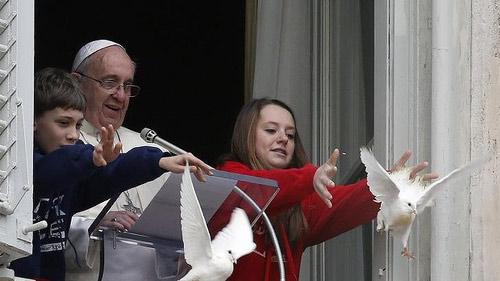 Bồ câu hòa bình của Giáo hoàng bị tấn công - 1