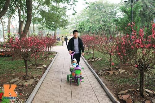 Hà Nội trang hoàng đón Tết Nguyên đán 2014 - 10