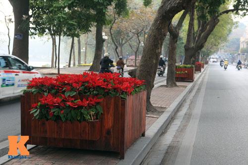 Hà Nội trang hoàng đón Tết Nguyên đán 2014 - 14