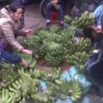 Thị trường - Tiêu dùng - Giật mình với giá chuối xanh, hoa quả Tết