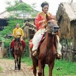 Phim - Dở khóc dở cười vì ngựa phi vào phim Việt