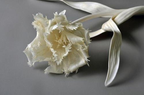 Những cành hoa từ xương động vật chết - 5