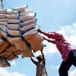 Thị trường - Tiêu dùng - Xuất khẩu nông sản giảm gần 10%
