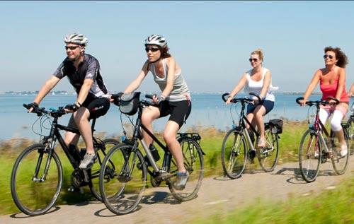 """Hà Lan thành """"thiên đường xe đạp"""" như thế nào? - 1"""
