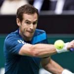 Thể thao - Murray - Vasselin: 2 set như một (V1 Rotterdam Open)