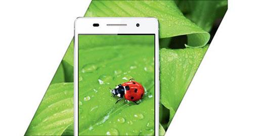 """Titan Q5 """"tái xuất'' thị trường smartphone - 7"""