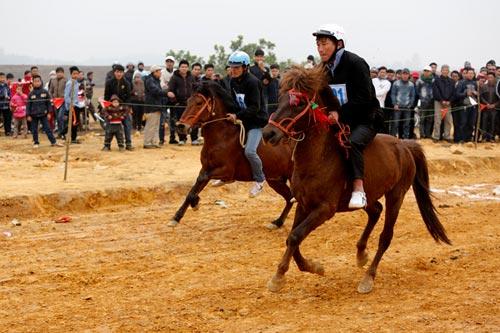 Xem kỵ sỹ cao nguyên trắng đua ngựa tại Hà Nội - 1
