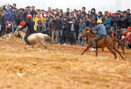 Xem kỵ sỹ cao nguyên trắng đua ngựa tại Hà Nội - 2