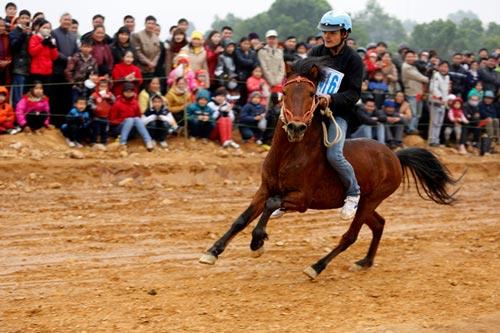 Xem kỵ sỹ cao nguyên trắng đua ngựa tại Hà Nội - 3