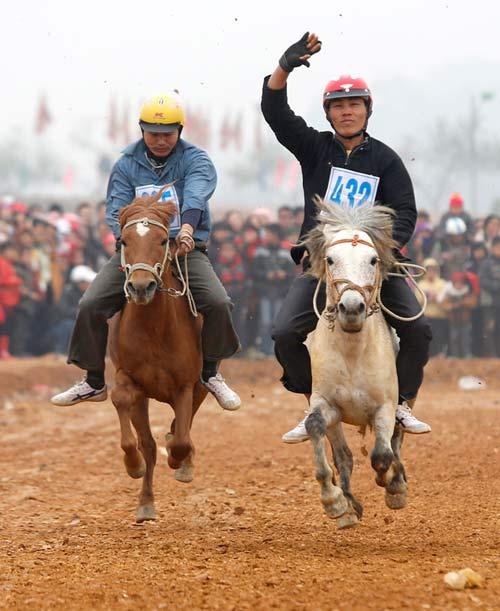 Xem kỵ sỹ cao nguyên trắng đua ngựa tại Hà Nội - 4