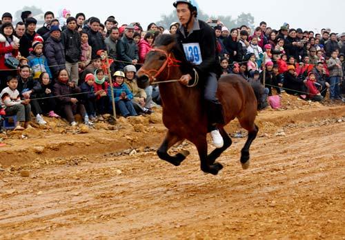 Xem kỵ sỹ cao nguyên trắng đua ngựa tại Hà Nội - 6