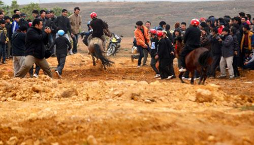 Xem kỵ sỹ cao nguyên trắng đua ngựa tại Hà Nội - 5