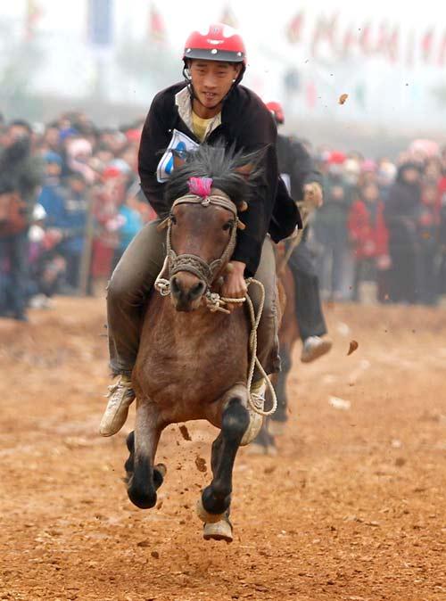 Xem kỵ sỹ cao nguyên trắng đua ngựa tại Hà Nội - 8