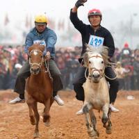 Xem kỵ sỹ cao nguyên trắng đua ngựa tại Hà Nội