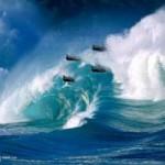 Tin tức trong ngày - Tam giác quỷ Bermuda: Chuyến bay định mệnh