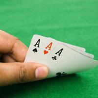 Hai hiệu trưởng đánh bạc được tại ngoại