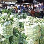 Thị trường - Tiêu dùng - Khi trái dưa hấu giá ngang ly trà đá