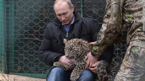 Nga sẽ đưa quân vào can thiệp ở Ukraine? - 1