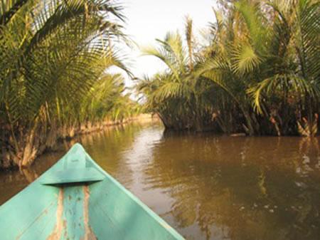 Quyến rũ rừng dừa Bảy Mẫu ở Hội An - 1