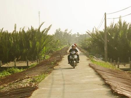 Quyến rũ rừng dừa Bảy Mẫu ở Hội An - 2
