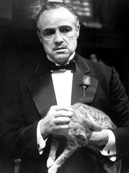 """Bố già"" Marlon Brando: Bi kịch 1 huyền thoại - 1"