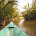 Du lịch - Quyến rũ rừng dừa Bảy Mẫu ở Hội An