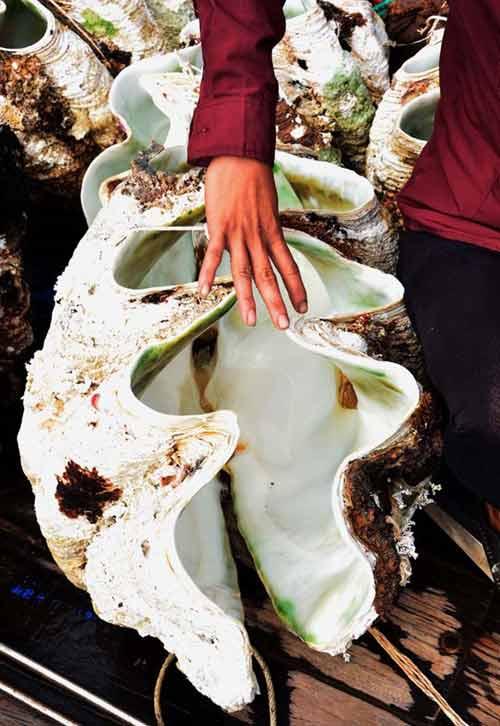 Kiếm bạc tỷ từ nghề săn sò tượng khổng lồ - 3