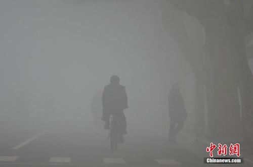 TQ: Dân kiện chính quyền vì bị khói mù vây hãm - 4