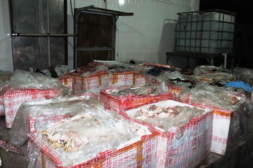 Bắt giữ 1,6 tấn chân trâu bò thối tuồn vào TP.HCM - 2