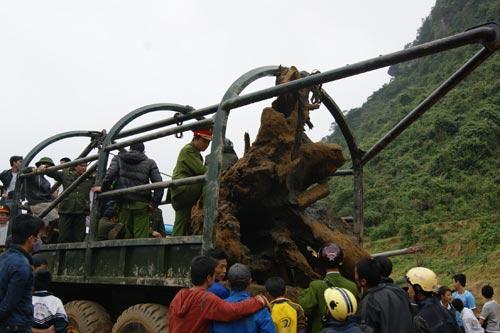 Xem khối gỗ sưa tiền tỷ được trục vớt thành công - 2