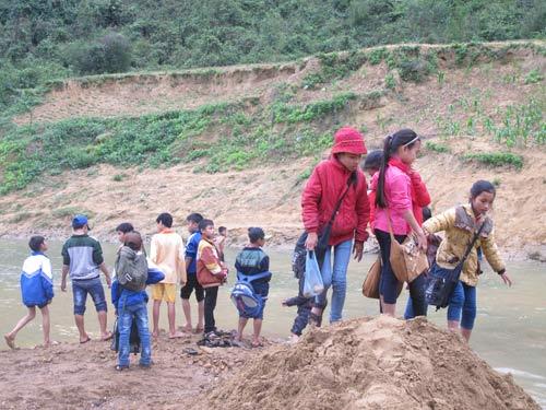 Dân xới tung lòng suối để mót gỗ sưa tiền tỷ - 3