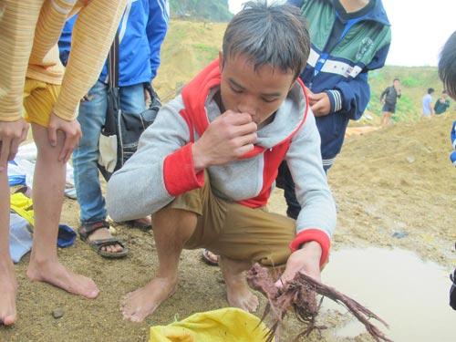 Dân xới tung lòng suối để mót gỗ sưa tiền tỷ - 4
