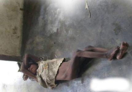 """Cuộc sinh tồn của cô bé """"người rừng"""" ở Khánh Hòa - 2"""