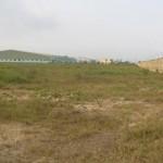 Tài chính - Bất động sản - Rà soát đất KCN phục vụ doanh nghiệp