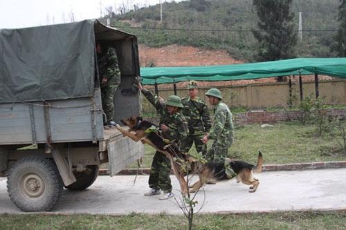 Ảnh: Theo chân chiến sĩ biên phòng đi tuần tra - 4