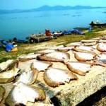 Du lịch - Đến với Tây Ninh mùa nắng cháy