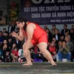 Thể thao - Nữ đô vật 106kg đè bẹp hàng loạt đối thủ