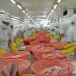 Thị trường - Tiêu dùng - Cảnh báo khi buôn bán với tư thương Trung Quốc