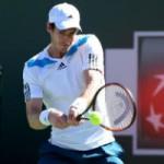 Thể thao - Murray: Tương lai Wimbledon là ở Indian Wells