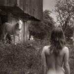 Cười 24H - So sánh người mẫu khỏa thân và con ngựa