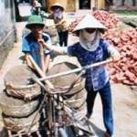 Tin tức trong ngày - Hạnh phúc lạ kỳ của ba anh em mù ở Bắc Ninh
